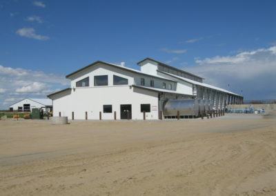 Dairy in Colo. (1)
